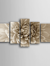 E-HOME® Stretched Canvas Art Flowers Decorative Painting Set of 5