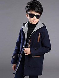 Boy Casual/Daily Embroidered Down & Cotton Padded,Polyester Winter Long Sleeve