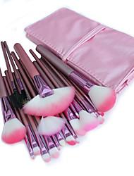 22 Makeup Brushes Set Nylon Hair Professional / Portable Wood Handle Face/Eye / Lip Pink