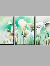 Pintados à mão Vida Imóvel / Floral/Botânico Pinturas a óleo,Modern / Pastoril 3 Painéis Tela Hang-painted pintura a óleo For Decoração