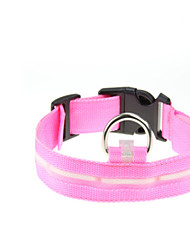 Dog Collar Strobe/Flashing Solid Red / Green / Blue / Yellow Nylon