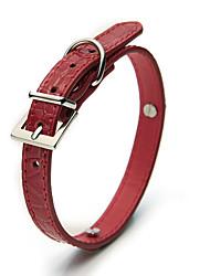 Chien Colliers Ajustable/Réglable Solide Rouge Plastique