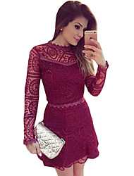Women's Burgundy Lace Long Sleeve Skater Dress