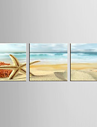 Canvas Set Famous / Landscape Modern / Classic,Three Panels Canvas Square Print Wall Decor For Home Decoration
