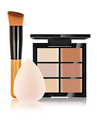 6 Concealer/ContourPowder Puff/Beauty Blender / Makeup Brushes Wet Face Concealer China Others