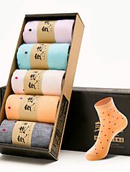 das meias mulheres uma caixa de 5 pares de meia