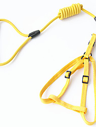 Dog Leash Casual Solid Red / Green / Blue / Yellow Fabric