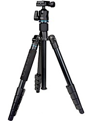 Benro tripé tripé it25 com o dobrador para câmera SLR / Canon / Nikon câmera SLR viajar luz SLR