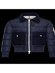 Men's Regular Down Coat,Simple Casual/Daily Solid-Cotton White Duck Down Long Sleeve Hooded Blue