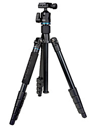 Benro It15 Tripod Canon For Nikon Slr Camera Travel Light Slr Camera Tripod