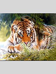 Pintados à mão Abstrato Animal Pinturas Óleo Prints +,Moderno Clássico 1 Painel Tela Pintura a Óleo For Decoração para casa