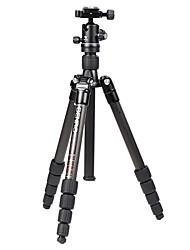 Benro tripé c1690tb0 com fibra de carbono para Canon / Nikon impreaaion câmera SLR nip tripé SLR profissional