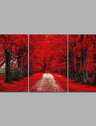 canvas Set Impressão em tela sem moldura Paisagem Fantasia Moderno,3 Painéis Tela Horizontal Impressão artística wall Decor For Decoração