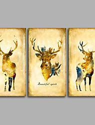 canvas Set Impressão em tela sem moldura Animal Estilo Europeu,3 Painéis Tela Horizontal Impressão artística wall Decor For Decoração