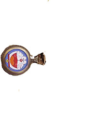Мужской Карманные часы Кварцевый сплав Группа Белый