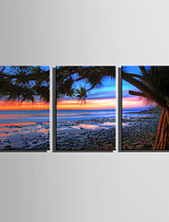 E-HOME Stretched Canvas Art The Beach at Sunset Decoration Painting Set Of 3