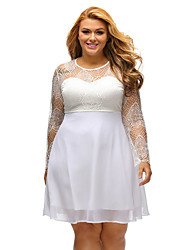 Women's Lace Boohoo Plus Size Lace Top Skater Dress