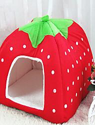 Pet Strawberry