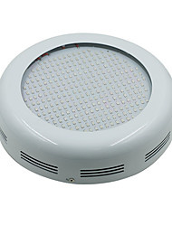 100W LED Grow Lights 277 SMD 5730 13850-15000 lm Warm White UV (Blacklight) Red Blue AC85-265 V 1 pcs