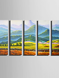 E-HOME Stretched Canvas Art Meadows And Mountains Decoration Painting Set Of 5