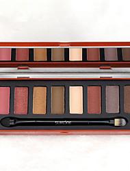 8 Paleta de Sombras Mate Brilho Paleta da sombra Pó Normal Maquiagem para o Dia A Dia