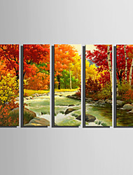 E-HOME Stretched Canvas Art  Maple And Swift rivers Decoration Painting Set Of 5