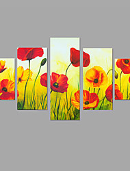 HD Print Beautiful Flower Painting Wall Art 5pcs/set Home Office Decor (No Frame)