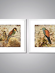 Framed Canvas Prints Singing Birds Painting Picture Print with White Frame  for Wall Decoration