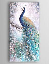 Ручная роспись Животное Вертикальная,Modern 1 панель Холст Hang-роспись маслом For Украшение дома