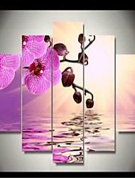 Impression d'Art A fleurs/Botanique Classique,Cinq Panneaux Format Horizontal Imprimé Décoration murale For Décoration d'intérieur