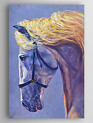 Hand-Painted  Horse Oil Painting With Stretcher For Home Decoration Ready to Hang