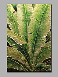 Hand-Painted Floral/Botanical Vertical,Modern One Panel Canvas Oil Painting For Home Decoration