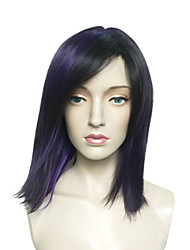 Kinky Straight Wig Black Synthetic Wig Natural Wigs Wigs for Women Costume Wigs Cosplay Wigs
