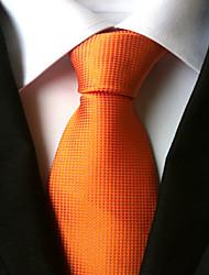 Homme Cravate Cravate Toutes les Saisons
