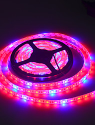 LED Grow Lights Growing LED Strip 5050 IP20 IP65 IP68 Plant Growth Light for Greenhouse Hydroponic plant 5m/lot AC100-240V