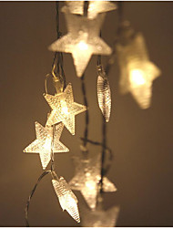 2.5 Meters 20 Light Wedding Christmas Day Outdoor Decoration LED Lantern/LED Frosted Star Battery Lamp