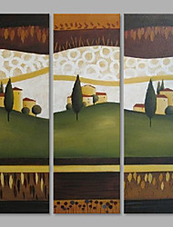 IARTS® Abstract Oil Painting Lovely Countryside Landscape Set of 3 with Stretched Frame Painting For Home Decoration Ready To Hang