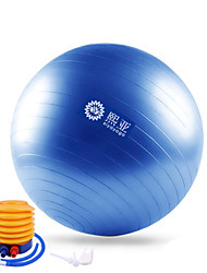 Fitness Ball/Yoga Ball Yoga Relaxed Fit Durable Life PVC-