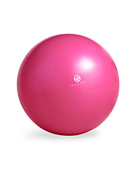 "25 1/2"" (65 cm) Fitnessball Explosionsgeschützte Yoga"