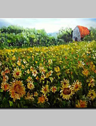 Big Size Hand-Painted Sunflower Garden Oil Paintings On Canvas Wall Art Picture For Home Decoration No Frame