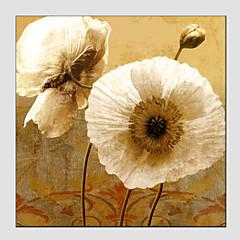 Hånd-malede Blomstret/BotaniskEuropæisk Stil / Moderne Et Panel Canvas Hang-Painted Oliemaleri For Hjem Dekoration