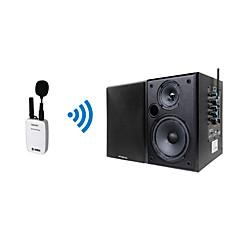 2.1 channel Wireless / Outdoor / Indoor