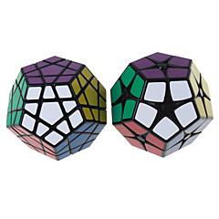 Rubikin kuutio Shengshou Tasainen nopeus Cube Megaminx Rubikin kuutio