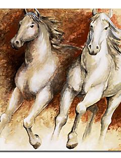 imprimée sur toile animaux chevaux avec cadre étiré