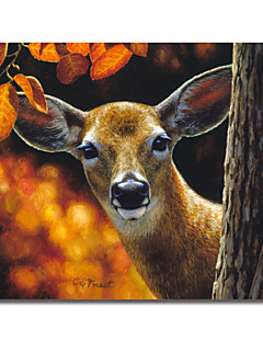 imprimée sur toile surprise animaux forêt Crista avec cadre étiré