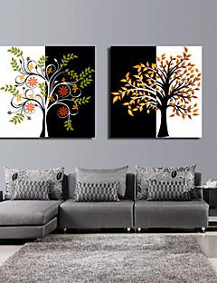 Stretched Canvas Art Botanical Tree Set of 2