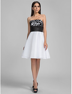 TS Couture® Cocktail Party / Homecoming / Graduation / Holiday Dress - Short Plus Size / Petite A-line Strapless Knee-length Taffeta with Lace / Sash