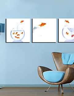 Toiles Tendues Art Saut animaux Fish Set de 3