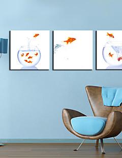 Strukket lerret Art Animal Jumping Fish Sett med 3