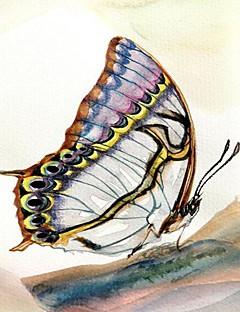 Reproduction transférée sur toile Art papillon animaux